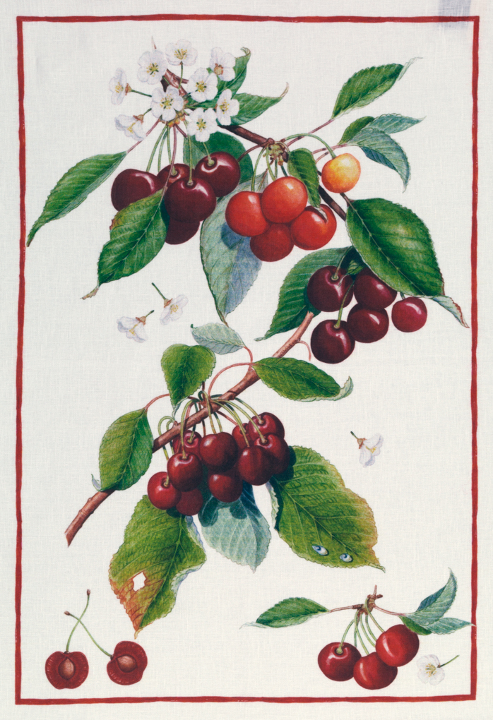 Cherries Linen Tea Towel 50x70cm