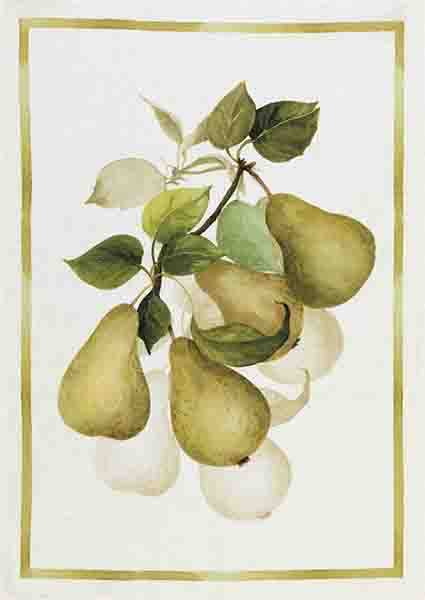 Pears Linen Tea Towel 50x70cm